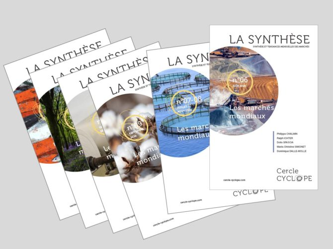 Synthese2020-21-cover