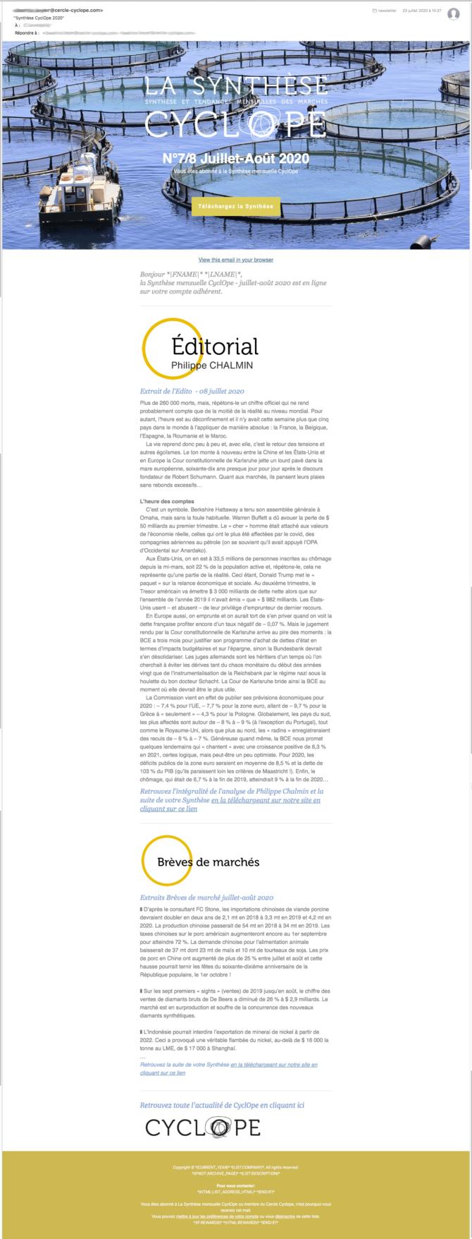 synthesCyclope-newsletter-2020