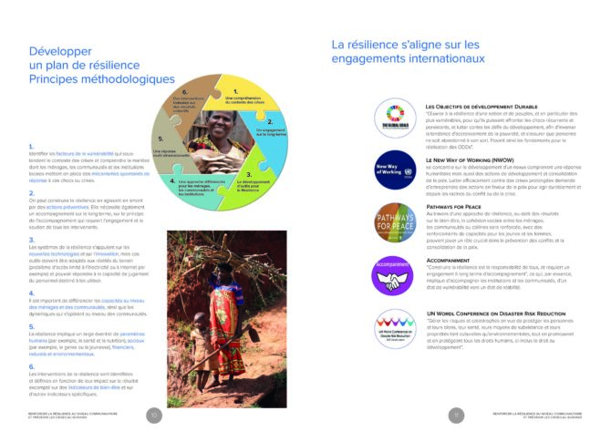 Resilience-UNDP-FR-print-planche_Page_06
